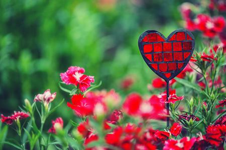 green flower: Beautiful garden with pink cloves