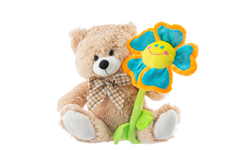 bear s: Teddy Bear holds flower  isolated on white background. Valentine's day concept