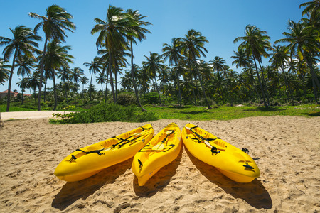ocean kayak: Canoe Kayak boats on sunny tropical beach with palm trees, Punta Cana
