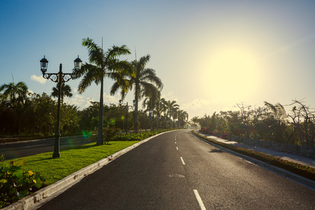 cana: Pathway and tropical garden toward luxury resort in Punta Cana, Dominican Republic