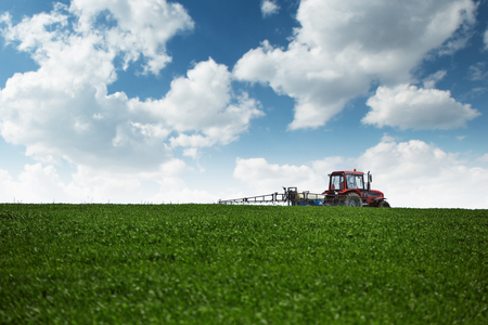 Trattore agricolo spruzzare campo di grano verde con lo spruzzatore Archivio Fotografico