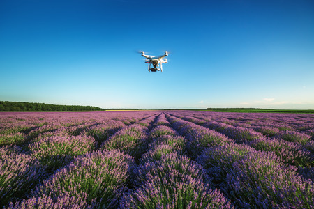phantom: Varna, Bulgaria - June 22, 2015,: Flying drone quadcopter Dji Phantom 2 with digital camera GoPro HERO4,  over beautiful lavender field in Provence Editorial