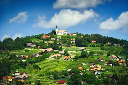 スロベニアで美しい村のパノラマ ビュー