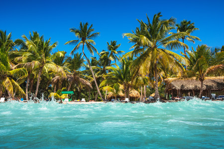 cana: Caribbean wild beach, Punta Cana Stock Photo