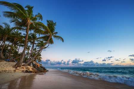 Caribbean wild beach, Punta Cana, sunrise shot