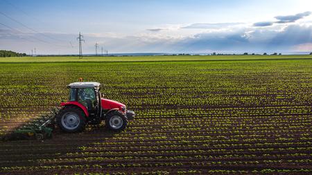 Tractor het cultiveren van het veld in het voorjaar, luchtfoto Stockfoto