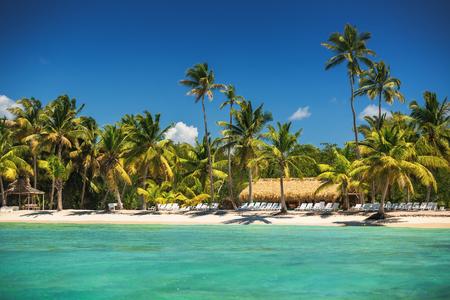 carribean: Tropical island in Carribean sea, beautiful panoramic view