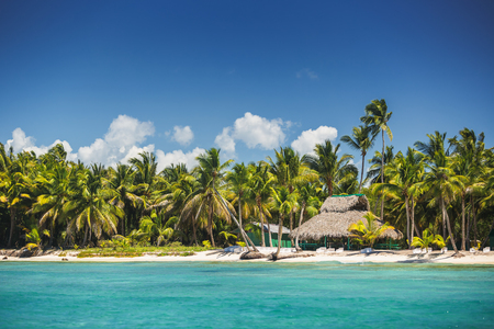 Carribean island, beautiful panoramic view Imagens