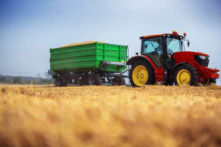 곡물로 가득 찬 농업 트랙터와 트레일러를 운전하는 파머