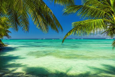 Beautiful carribean sea, panoramic view from the beach Stock Photo