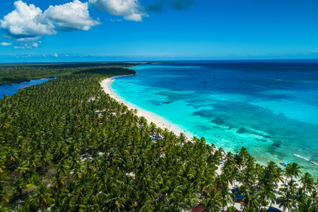 Aerial view of tropical island beach, Dominican Republic 写真素材