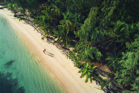Aerial view of tropical island beach, Dominican Republic Imagens