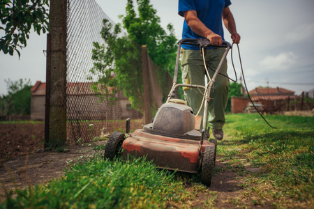 Lawn mower cutting green grass in backyard. Gardening background. Stock Photo