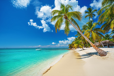 Playa tropical en Punta Cana, República Dominicana