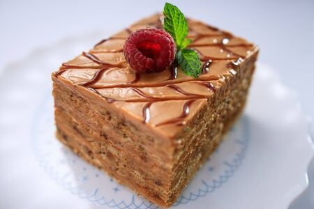 Cake piece with nuts, chocolate, biscuits and caramel cream isolated on white plate