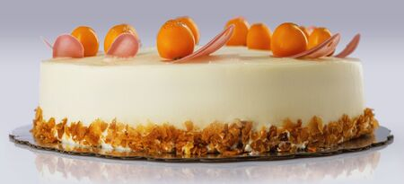 Chocolate cake with physalis fruits, cream, nuts and mousse Reklamní fotografie