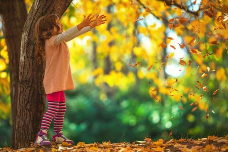 Beautiful little girl in a autumn park.