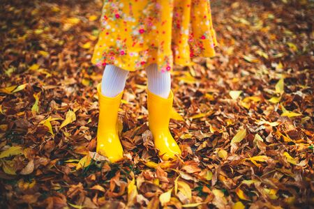 Yellow boots of little girl and fallen colorful leaves in autumn park .