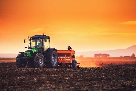 Contadino con il trattore che semina le colture in campo al tramonto Archivio Fotografico