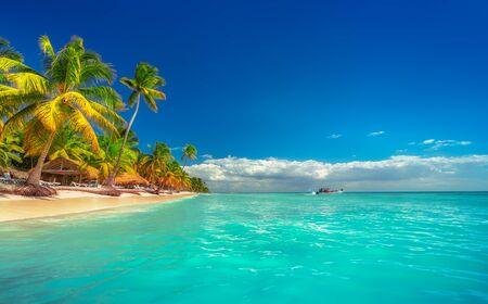 Krajobraz rajskiej tropikalnej plaży na wyspie z idealnym słonecznym niebem