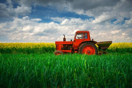 Red tractor in a rapeseed field and dramatic clouds