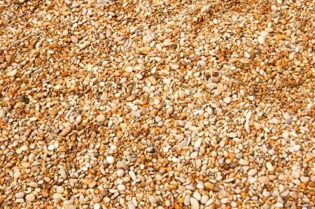 Coastal yellow-white sea pebbles as texture or background photo