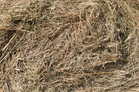 Side view of a skein of hay as background photo