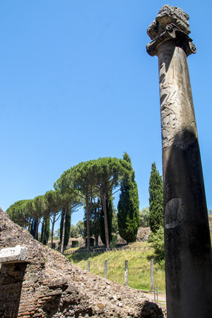 Ruins and tall pine trees against the blue sky in the ancient villa of Roman Emperor Hadrian near the town of Tivoli in Italy