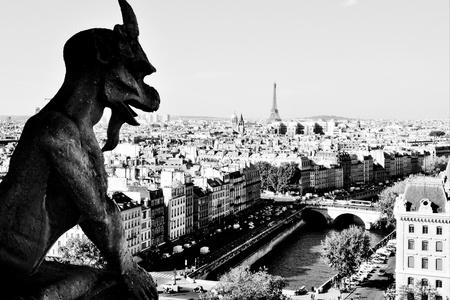 Gargoyle Paris guard watching the city photo