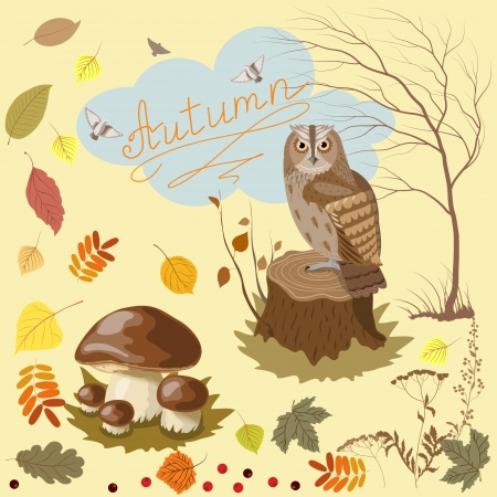 tree stump: Elements and objects of autumn.