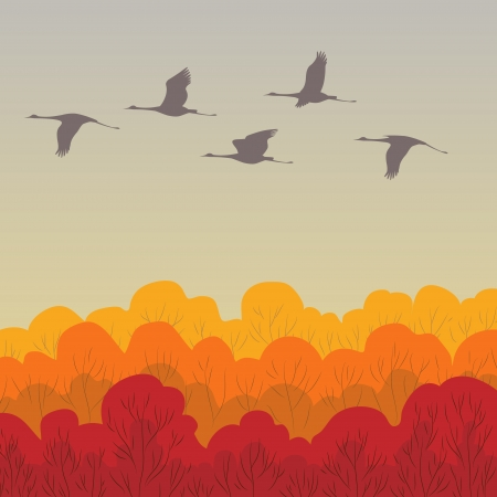 A flock of cranes is flying over the autumn forest Vector