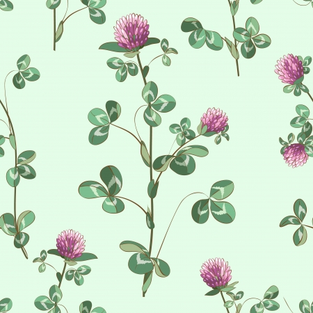 Seamless texture with meadow clover Vector