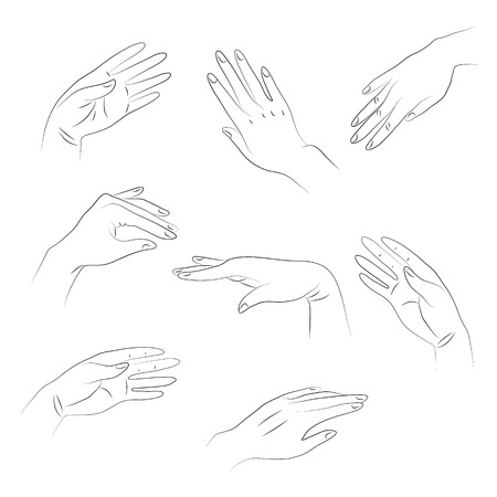 dermatologist: Outlines of hands on white background.