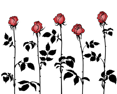 Silhouettes bunches of roses with red petals on  white .