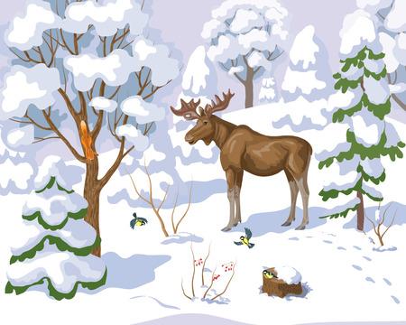 vogelspuren: Winter Landschaft mit Wald und seine Bewohner. Illustration