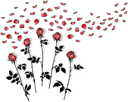 Silhouettes bunches of roses with red petals on  white. Vector