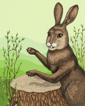 drumming: Funny hare drumming on stump
