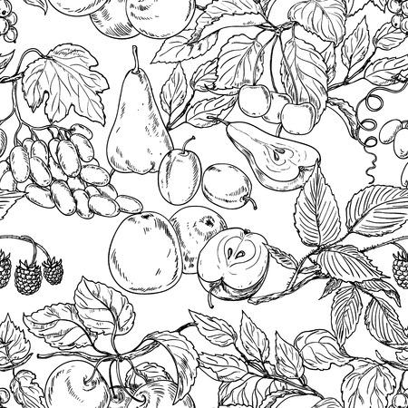 Naadloze textuur met fruit schets.