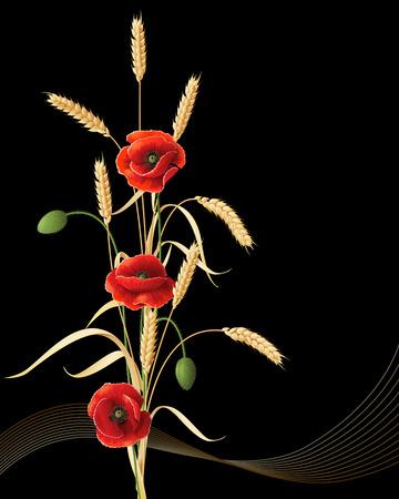 Tarwe oren schoof met rode papaver bloemen op een zwarte achtergrond. Stock Illustratie