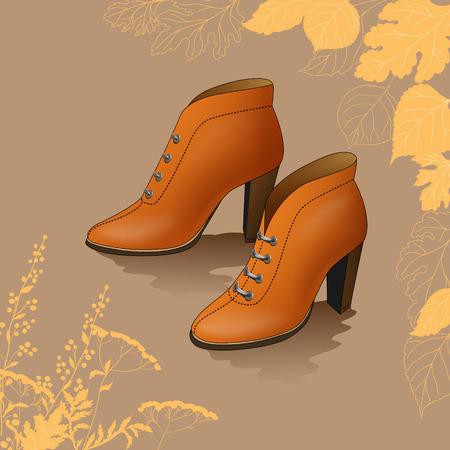 Women s shoes: Giày dép nữ trên nền mùa thu với lá cây và cỏ. Hình minh hoạ