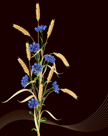 reaping: Bunch of wheat ears and blue cornflowers on black background.