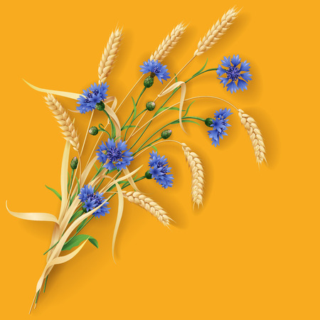 reaping: Bunch of wheat ears and blue cornflowers on orange background.