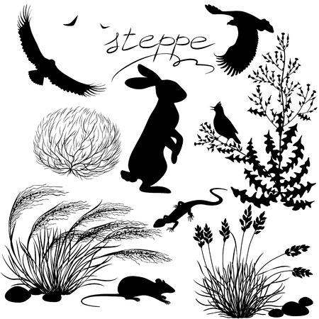 Set of silhouettes of steppe plants and animals. Illustration