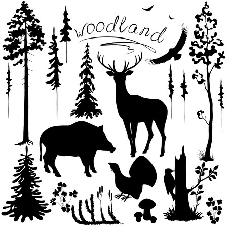 Set of silhouettes of woodland plants and animals.