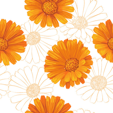 Seamless pattern with orange calendula flowers on white.