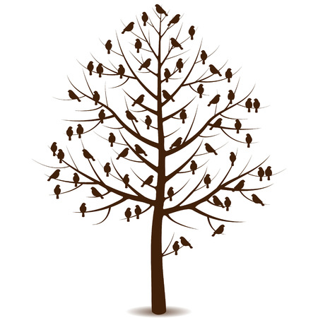 Silhouette of a tree without leaves and sitting birds on the branches.