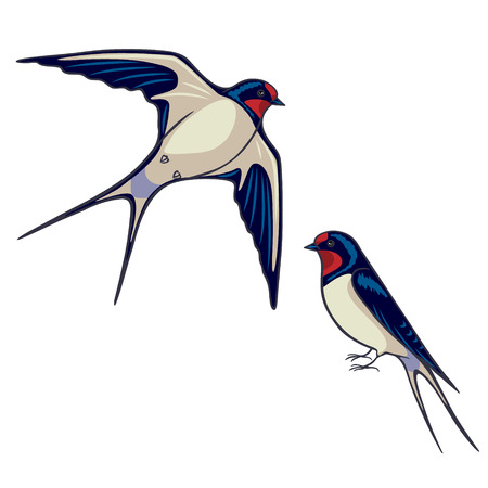 migrating birds: Simplified image of sitting and flying swallows isolated on white.