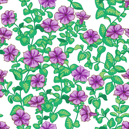 Seamless pattern with violet petunia flowers and green leaves  on white.