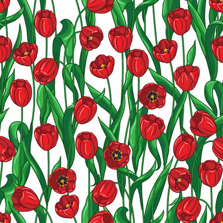 stamen: Seamless pattern with red tulips and green leaves on white. Illustration