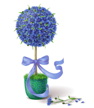 topiary: Floral decoration tree with blue cornflowers  and ribbon in green pot.